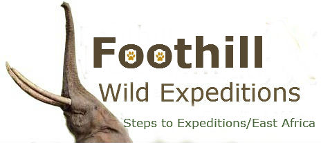 Foothill Wild Expeditions.
